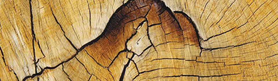 separator_wood